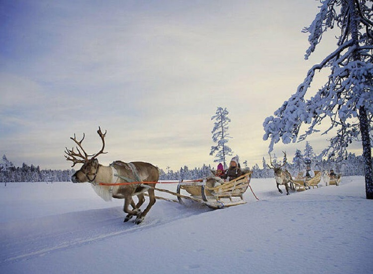 You Should All About Finland Tourist Attractions for Everyone